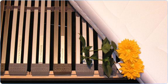 betten scheland bettw sche. Black Bedroom Furniture Sets. Home Design Ideas